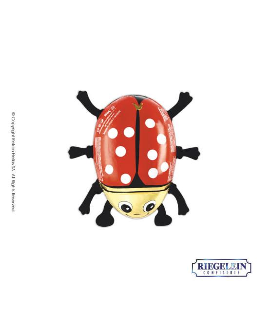 Riegelein Ladybug 30g
